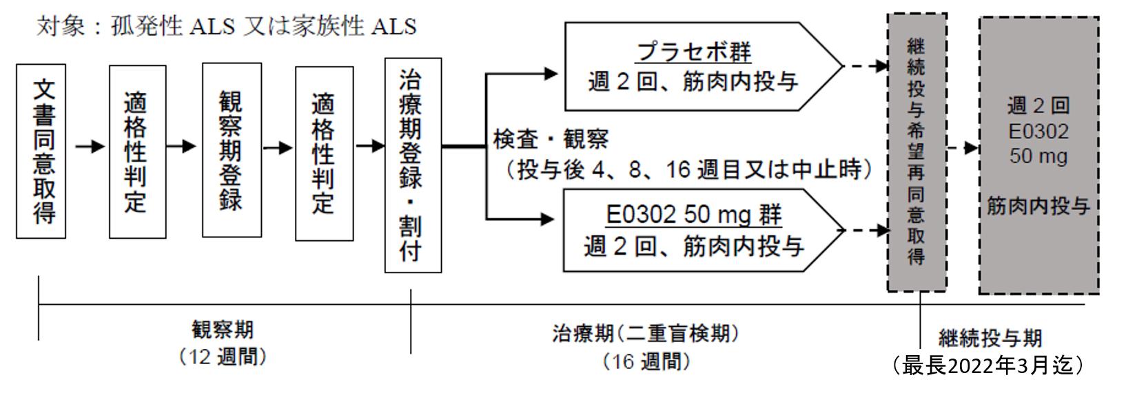 ALS治験スケジュール